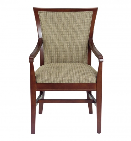 LG1067-1 Arm Chair Alternative Image
